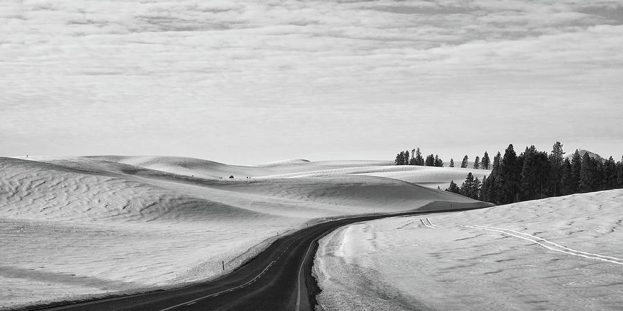 Winter Country Road 2 BW by Tatiana Travelways