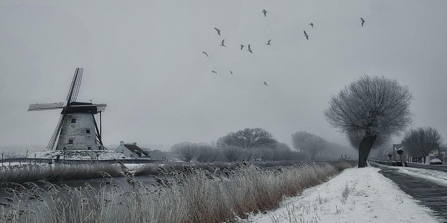 Belgium Photograph - Winter Etching by Yvette Depaepe