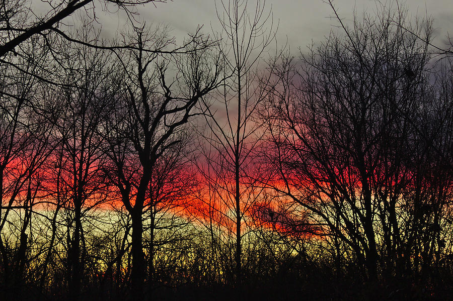 Sunset Photograph - Winter Evening by Brad Chambers