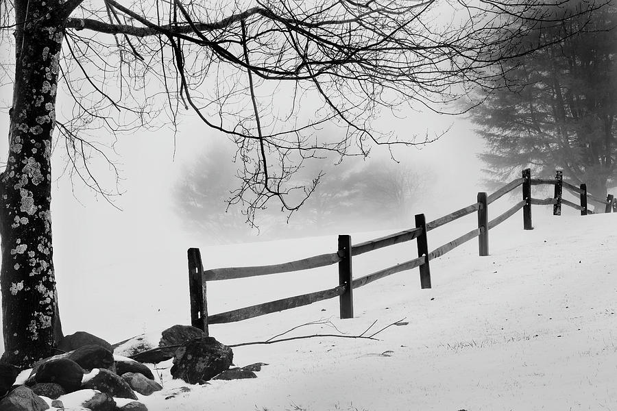 Winter Fence by Bill Wakeley