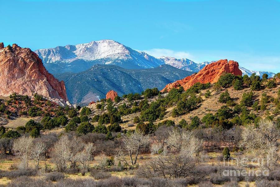 Winter Garden Of The Gods Colorado Photograph