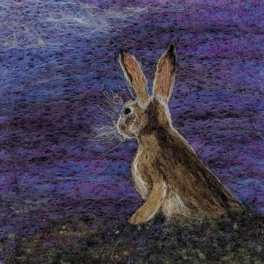 winter hare by Ushma Sargeant