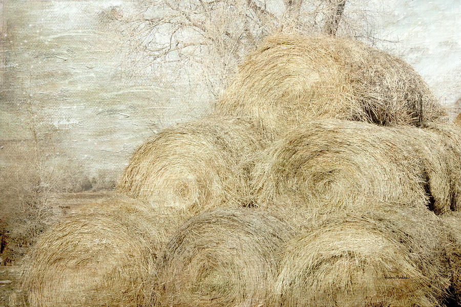 Winter Hay Stack by Ramona Murdock