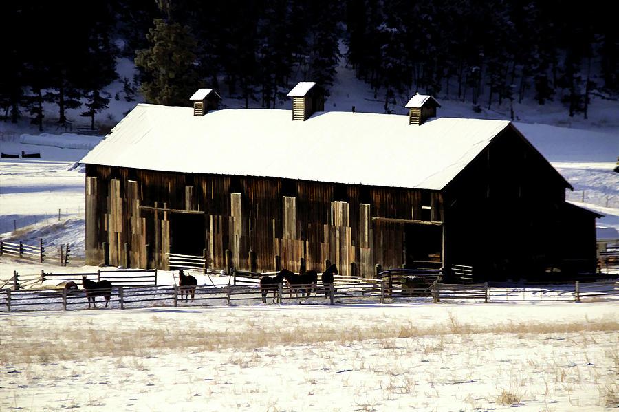 Winter Horse Barn by Roland Stanke