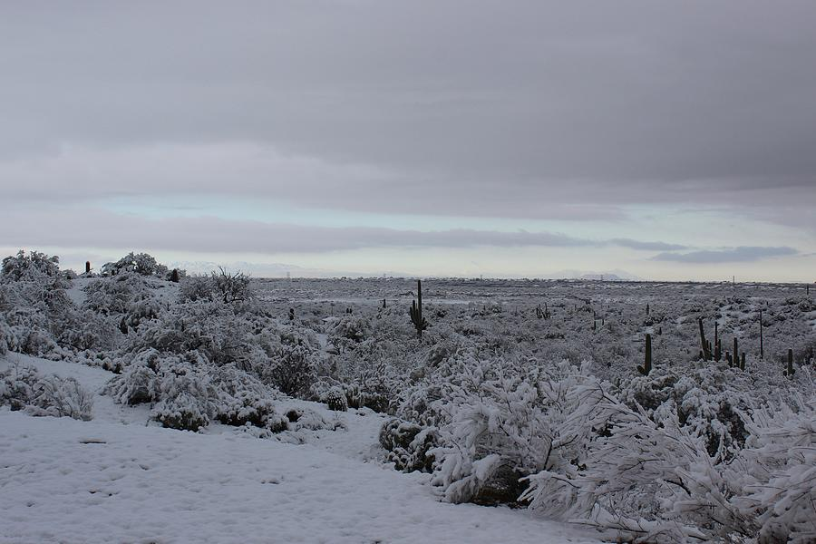 Winter in Arizona No.4 by Kume Bryant