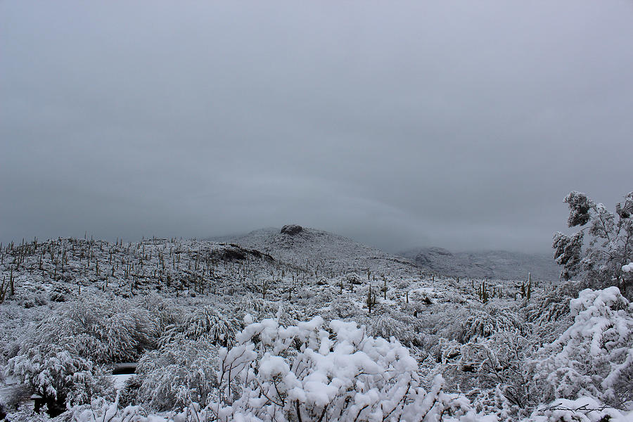 Winter in Arizona No.6 by Kume Bryant