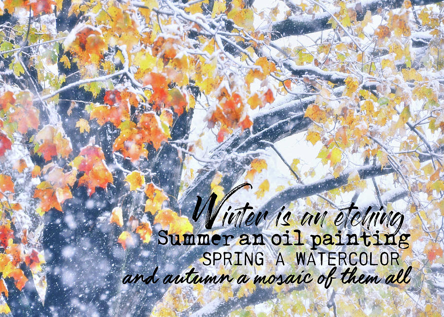 Winter Photograph - Winter In Autumn Quote by JAMART Photography