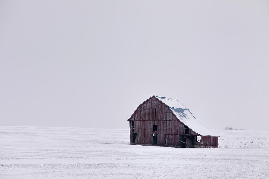Winter Isolation by Scott Bean