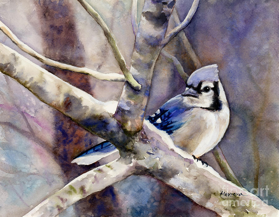Winter Jay Painting