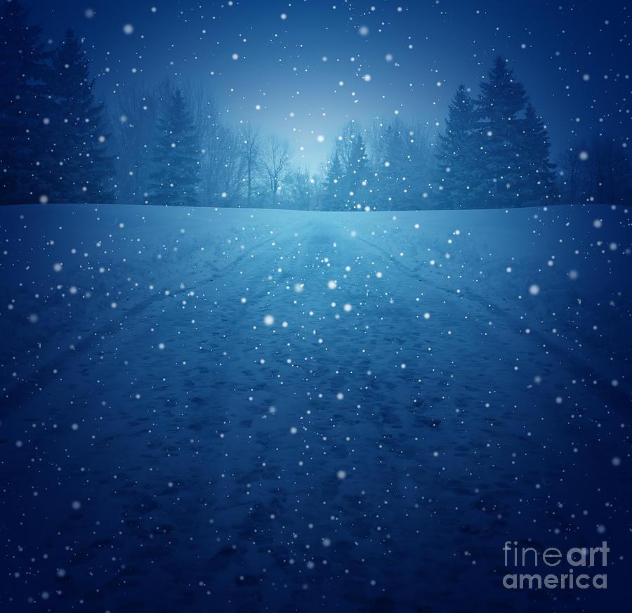 Winter Months Digital Art - Winter Landscape Concept As A Snowing by Lightspring