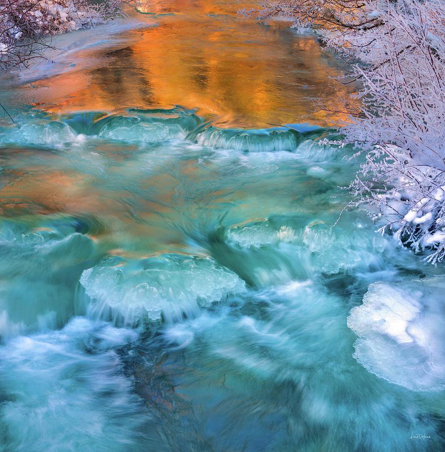 Azure Photograph - Winter Light Reflections by Leland D Howard