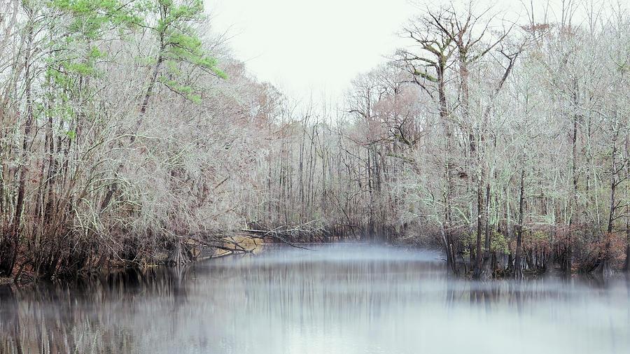 Winter Mist by Van Sutherland