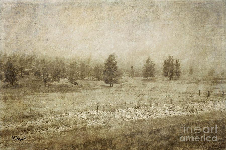 Winter Postcard by Rebecca Langen