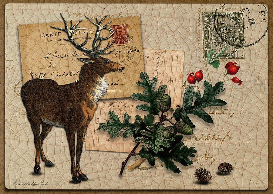 Winter Red Stag by Terry Kirkland Cook