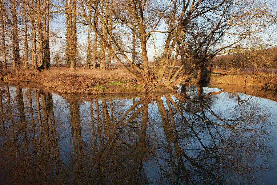 Winter reflections, Black Dyke, Peterborough by Nick Atkin