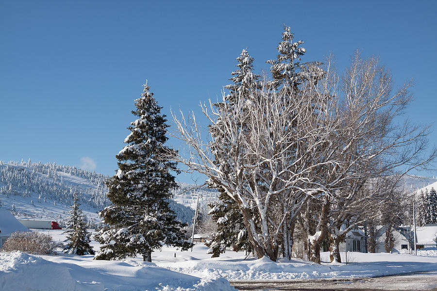 Winter scene in Spencer Idaho by Tatiana Travelways