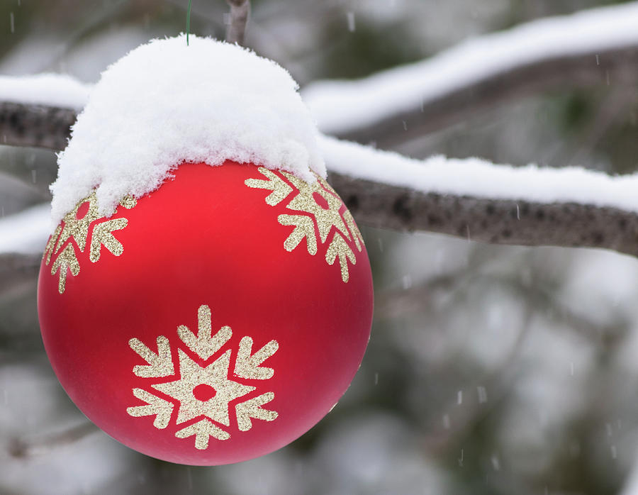 Winter scene - Red Christmas ball outside, with snow on it by Cristina Stefan