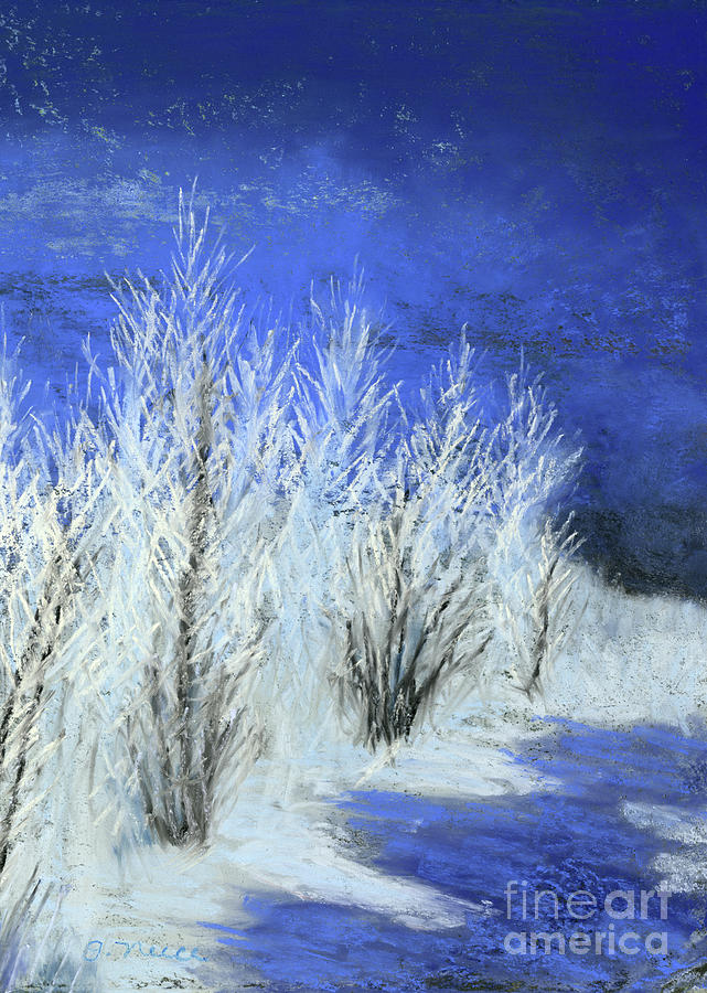 Winter Shadows by Ginny Neece