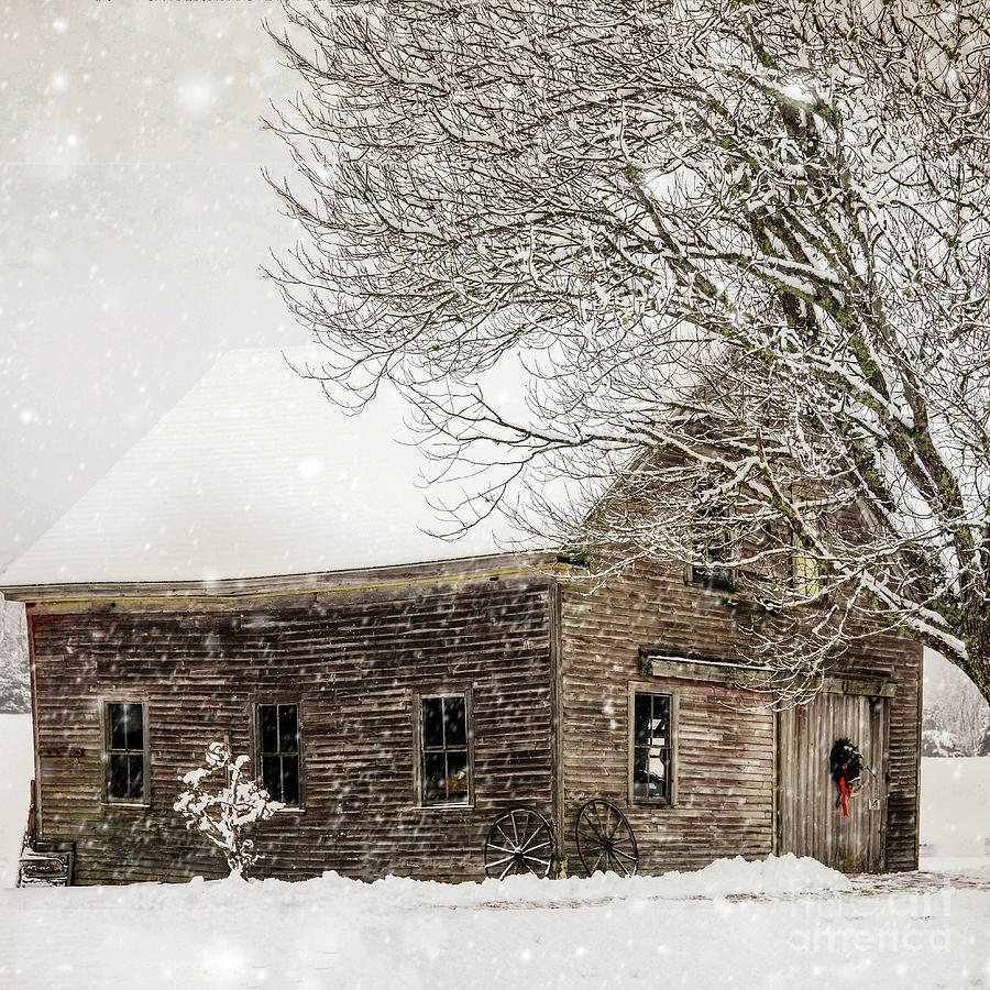 Winter Snowstorm by Susan Garver