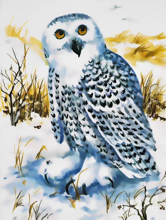Winter Snowy Owl by D Hackett