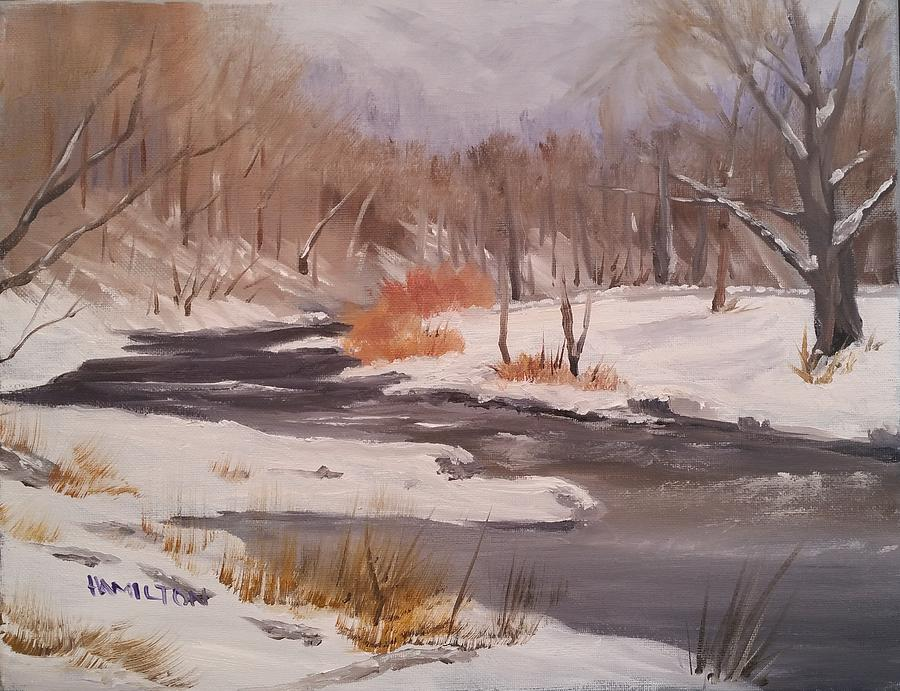 Winter Stream by Larry Hamilton
