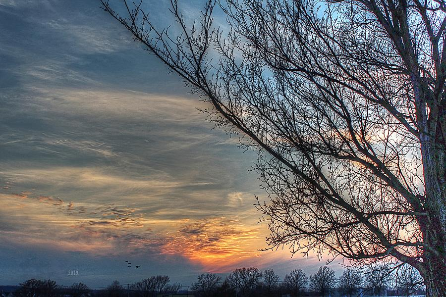Winter Sunset by Karen McKenzie McAdoo