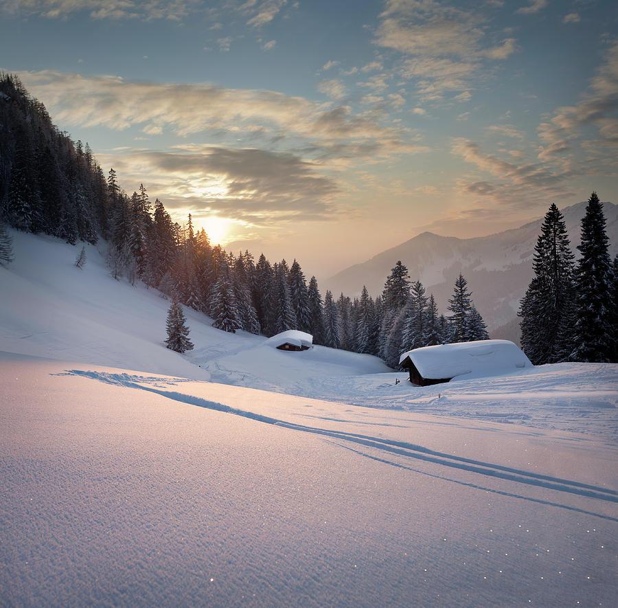 Winter Sunset Photograph by Lorenzo104