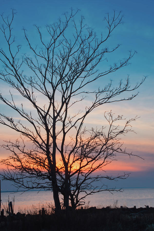Winter Sunset Silhouette by Gary Slawsky