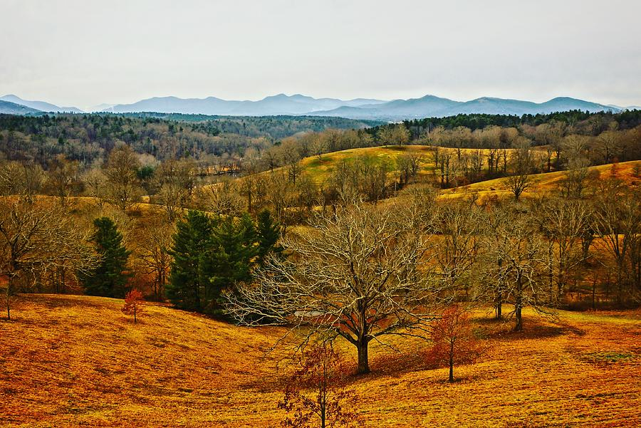 Winter View from Biltmore by Rodney Lee Williams