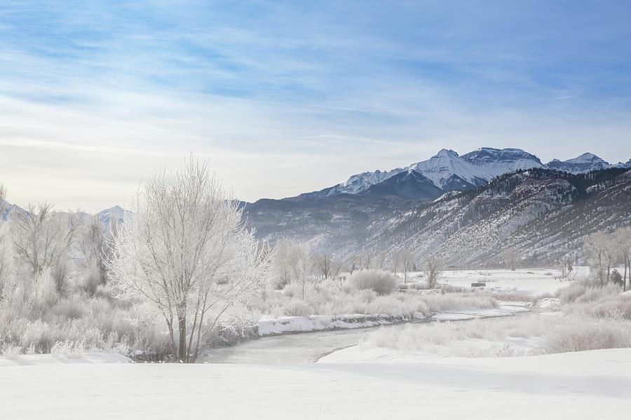 2019 Photograph - Winter Wonderland Below Whitehouse Mountain by Bridget Calip