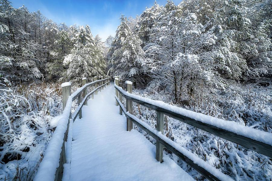 Winter Wonderland by Brad Bellisle