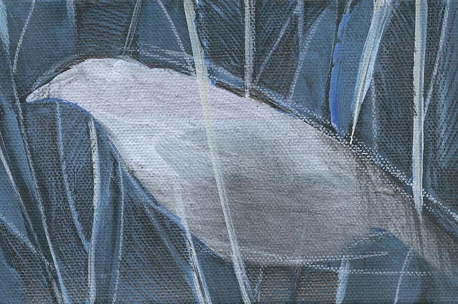 Winterbird 1 by Tim Nyberg