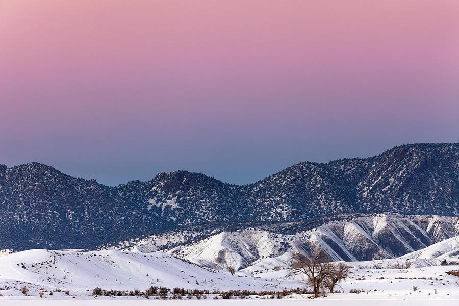 Winter's Gradient by Denise Bush