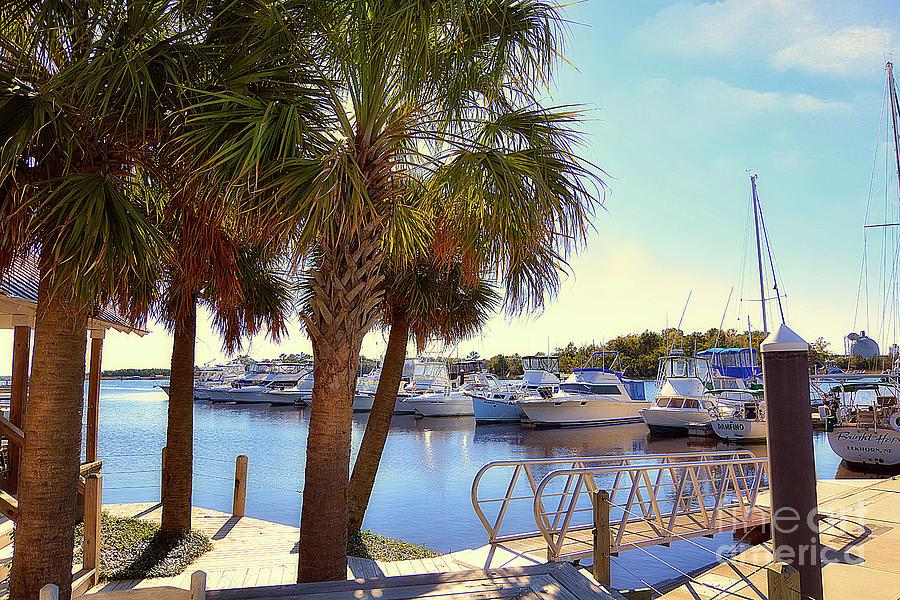 Winyah Bay Marina by Kathy Baccari