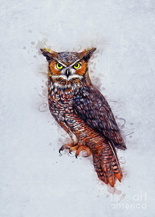 Wise Owl by Ian Mitchell