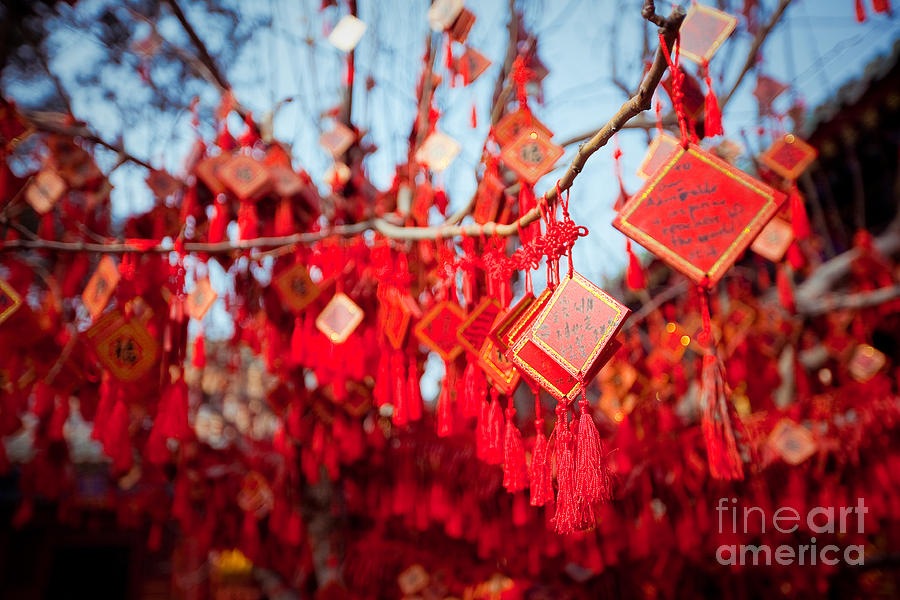 Religious Photograph - Wish Cards In A Buddhist Temple In by Tepikina Nastya