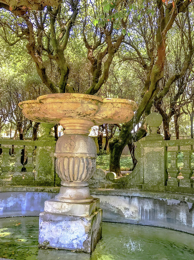 Alban Hills Photograph - Wishing Well by Joseph Yarbrough