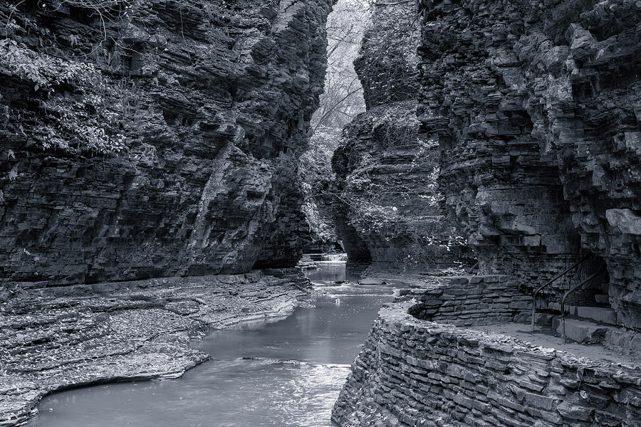 Within Watkins Glen Black and White by Joshua House