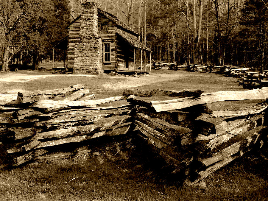 SP Log Cabin at Cades Cove by Michael McBrayer