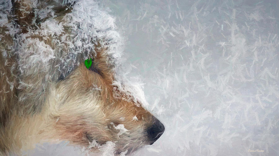 Wolf Painting - Wolf In The Snowstorm - Painting by Ericamaxine Price