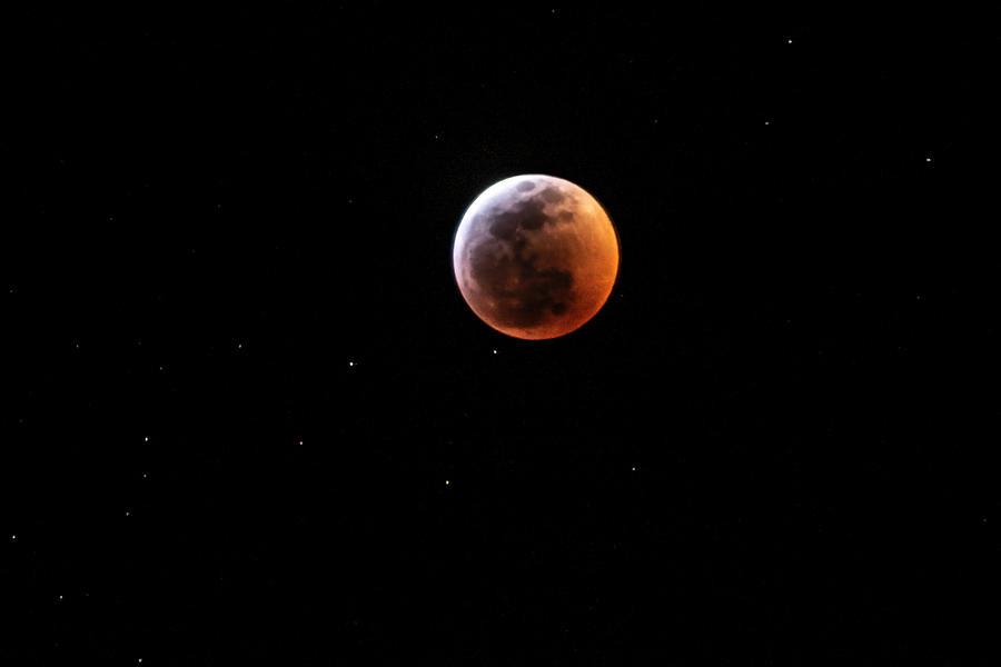 Wolf Moon by Jay Anne Boza