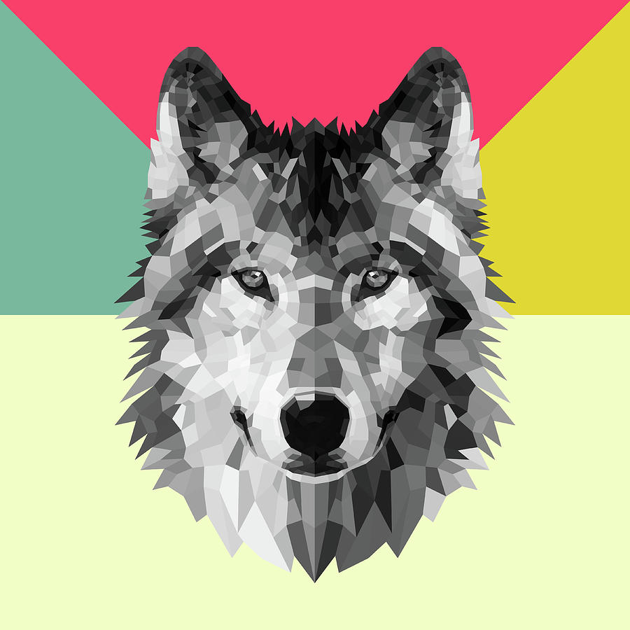 Wolf Digital Art - Wolf by Naxart Studio