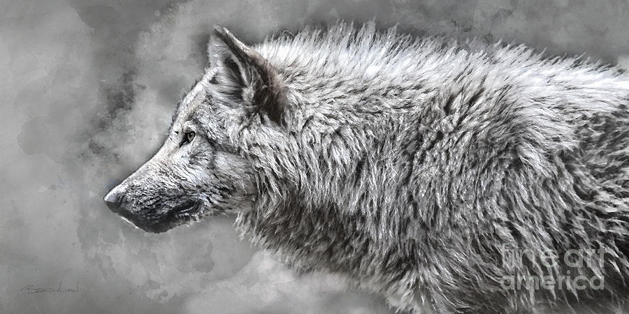 Wolf Profile by Brad Allen Fine Art