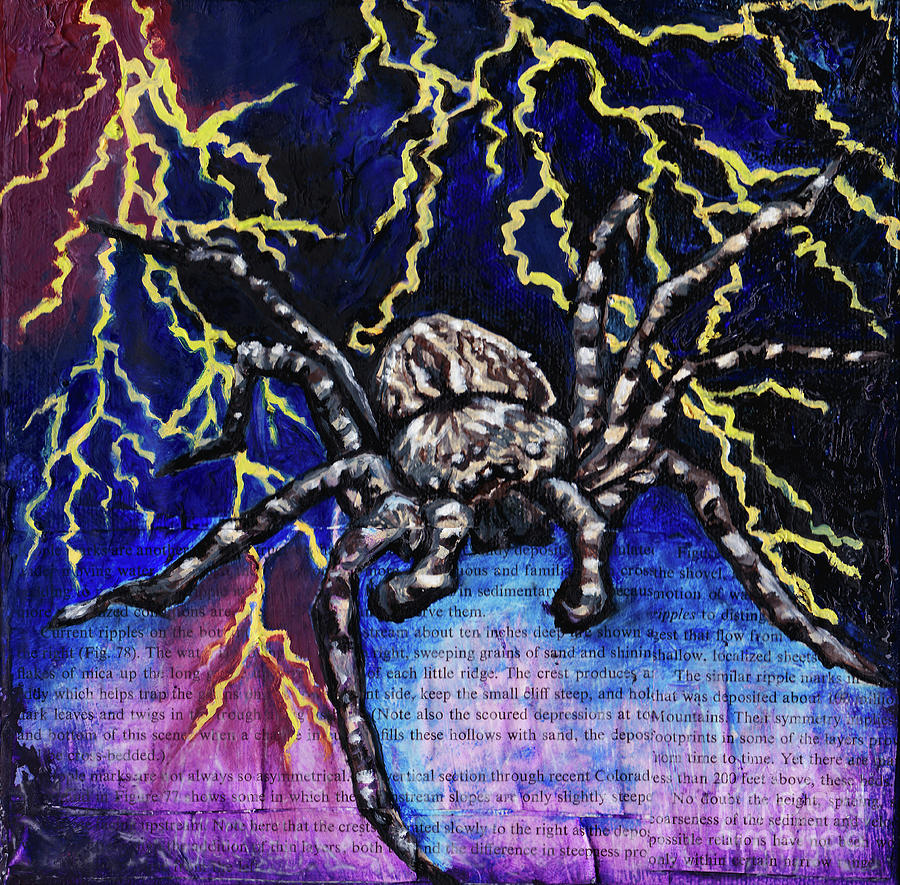 Spider Painting - Wolf Spider by Emily McLaughlin