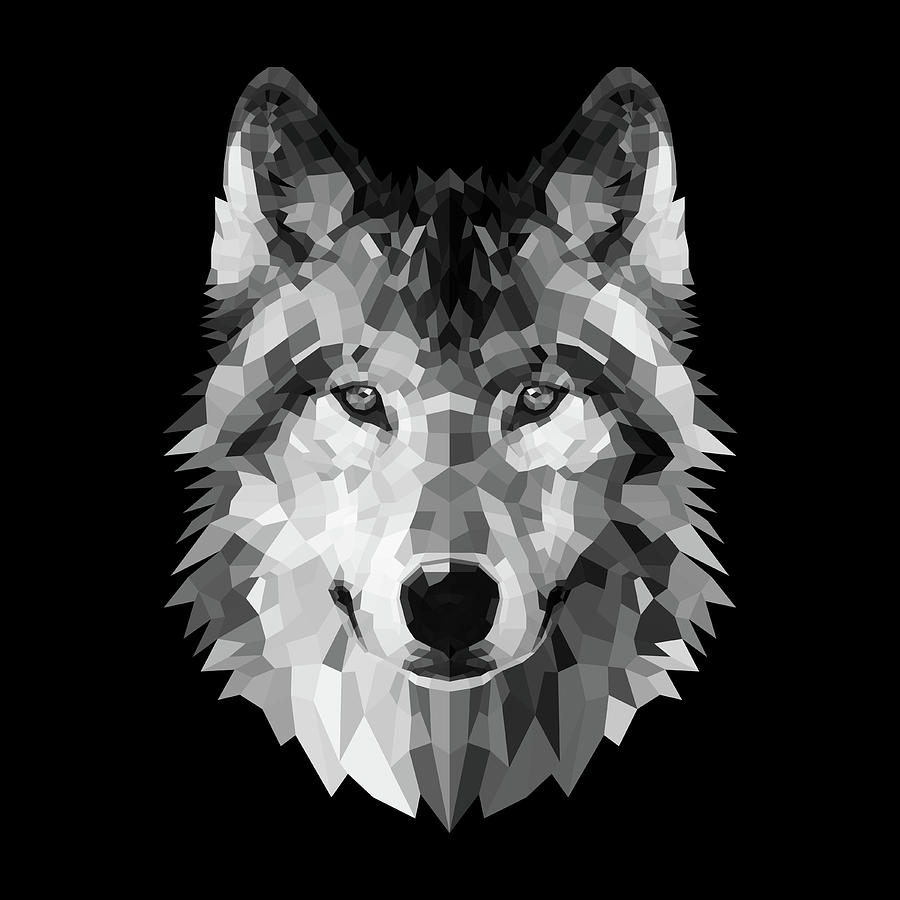Wolf Digital Art - Wolfs Face by Naxart Studio