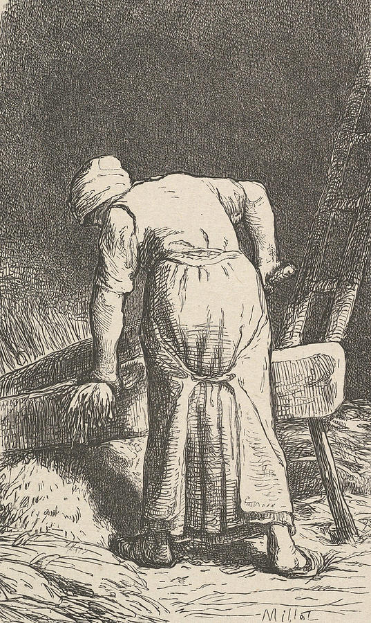 Woman Cutting Wheat by Jean-Francois Millet