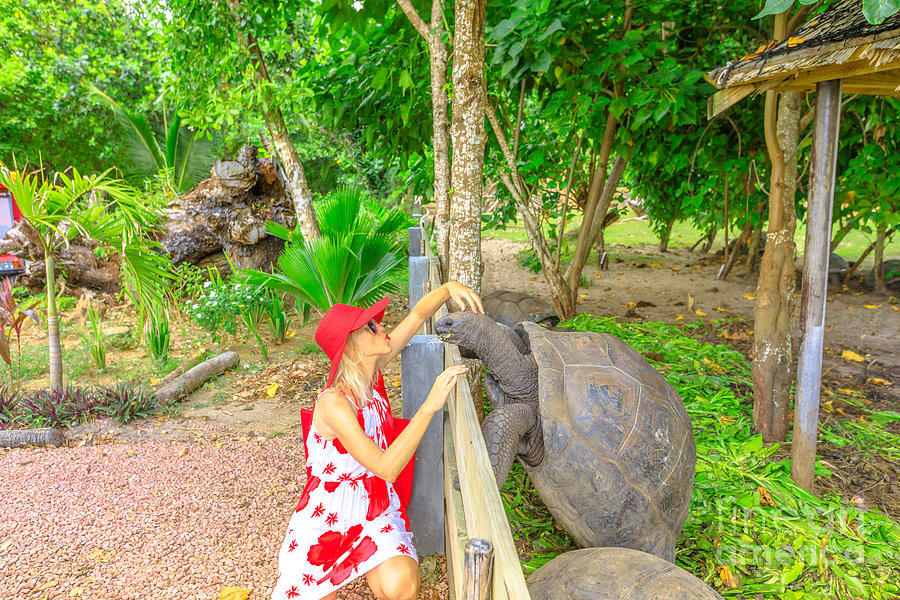 Woman kissing giant tortoise by Benny Marty