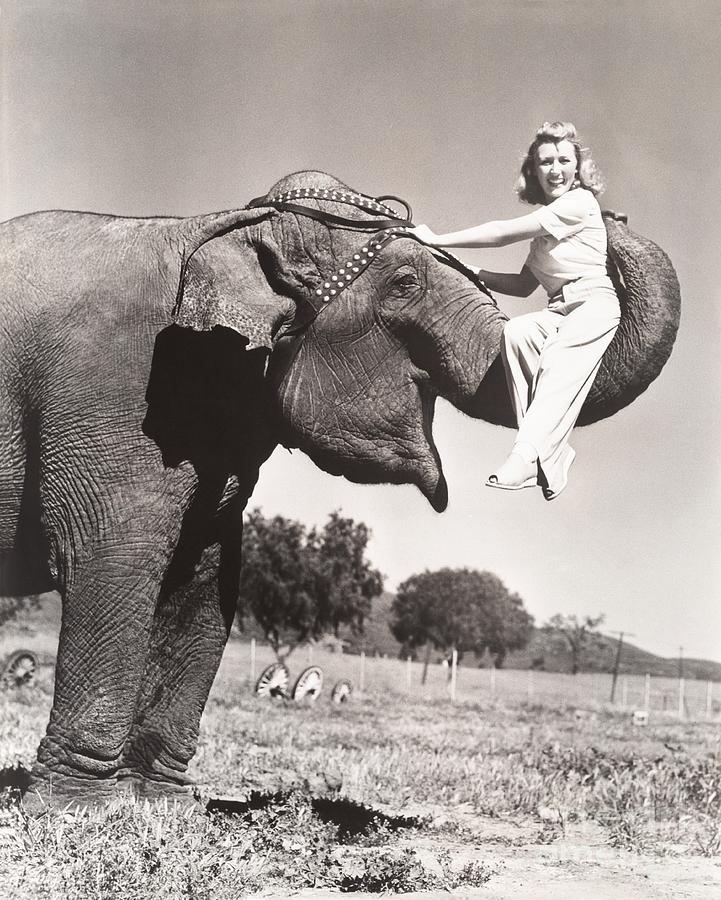 1910s Photograph - Woman Sitting On Elephants Trunk by Everett Collection