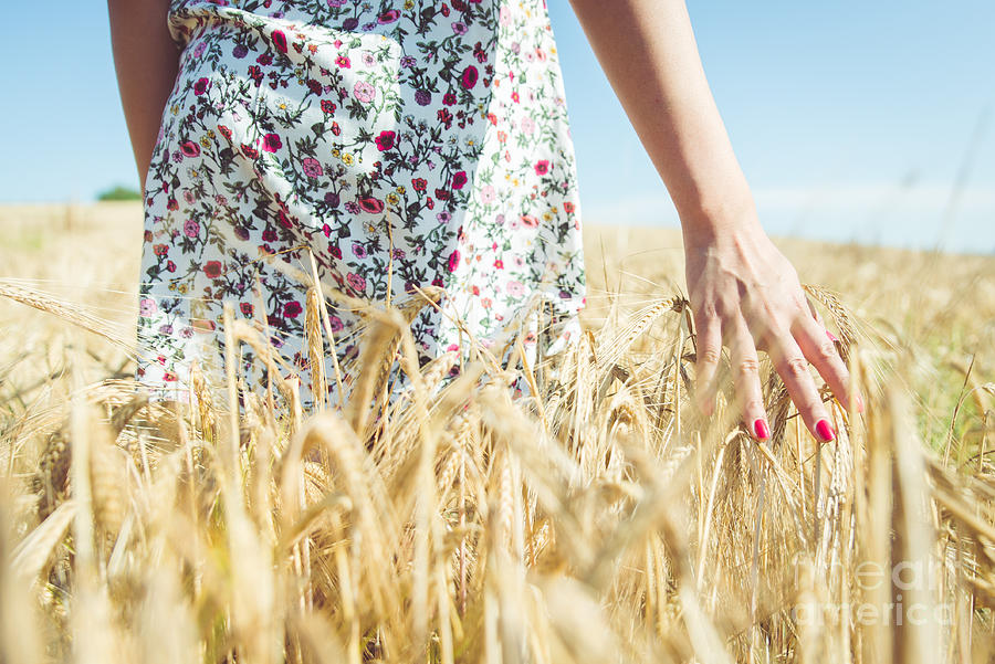 Dress Photograph - Woman Walking In The Wheat- Concept by Oneinchpunch