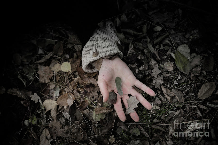 Womans Hand On Forest Floor Photograph by Westend61